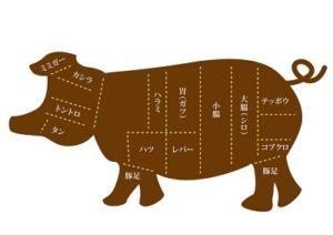 豚肉の肉の種類(あいーだママ家庭の救急箱)